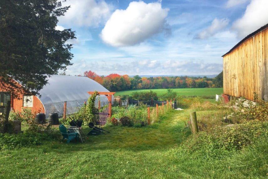 The FODMAP Everyday Farm in Fall