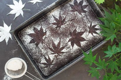 Spicy Low FODMAP Chocolate Snack Cake with stencils of leaves; dark background